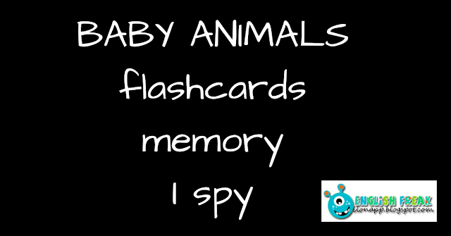 Baby Animals - flashcards, memory, I spy