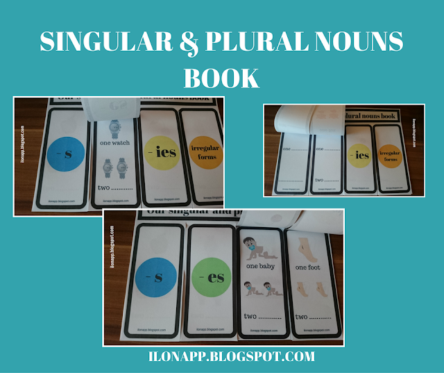 SINGULAR AND PLURAL NOUNS BOOK