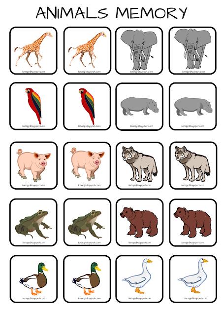 Animals memory na5 sposobów